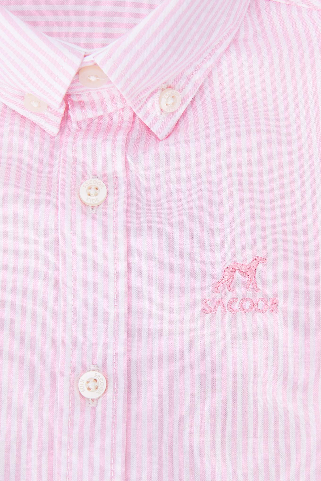 Camisa Rosa Casual Rapaz
