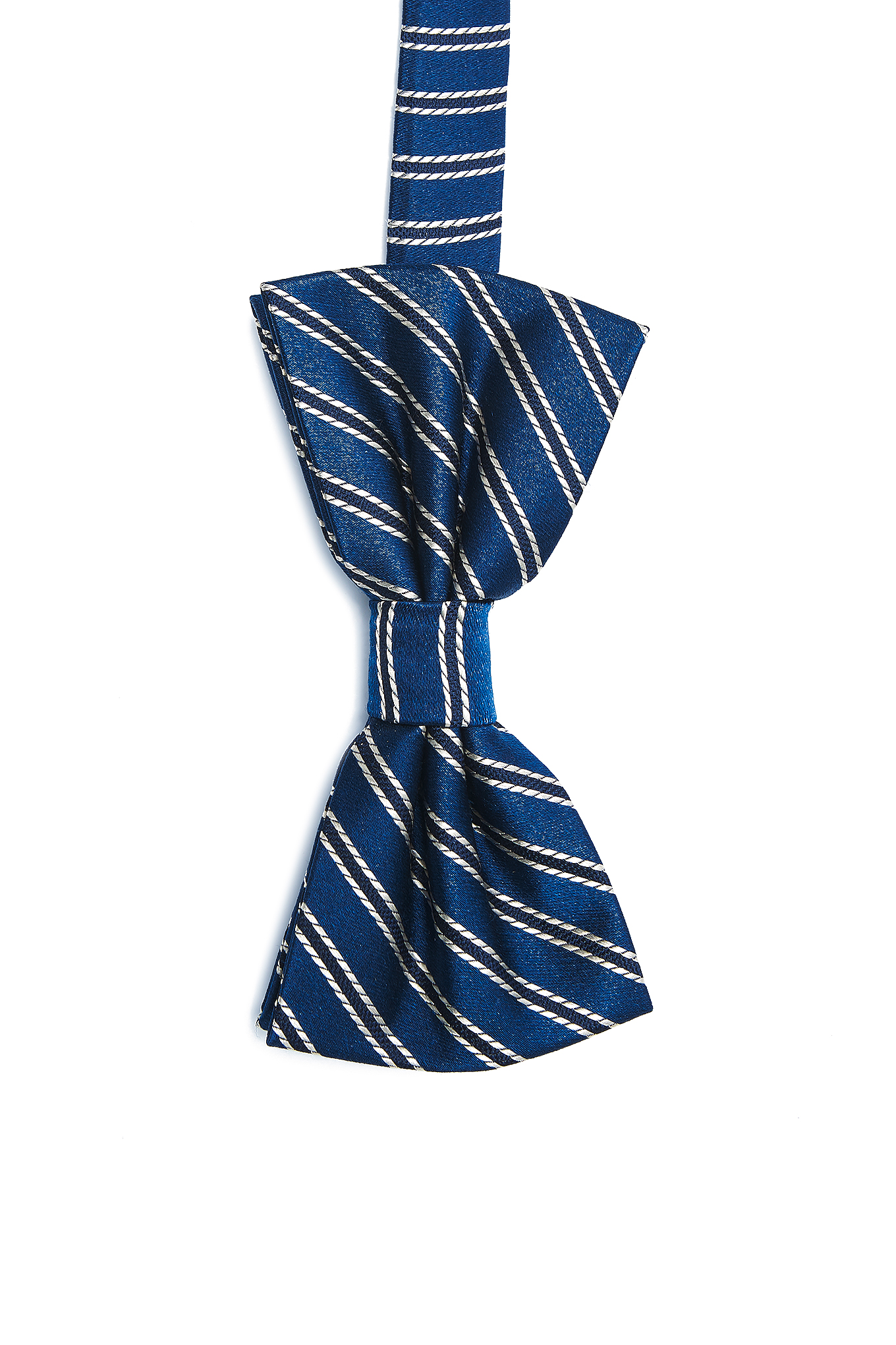 Bow Tie Blue Casual Man