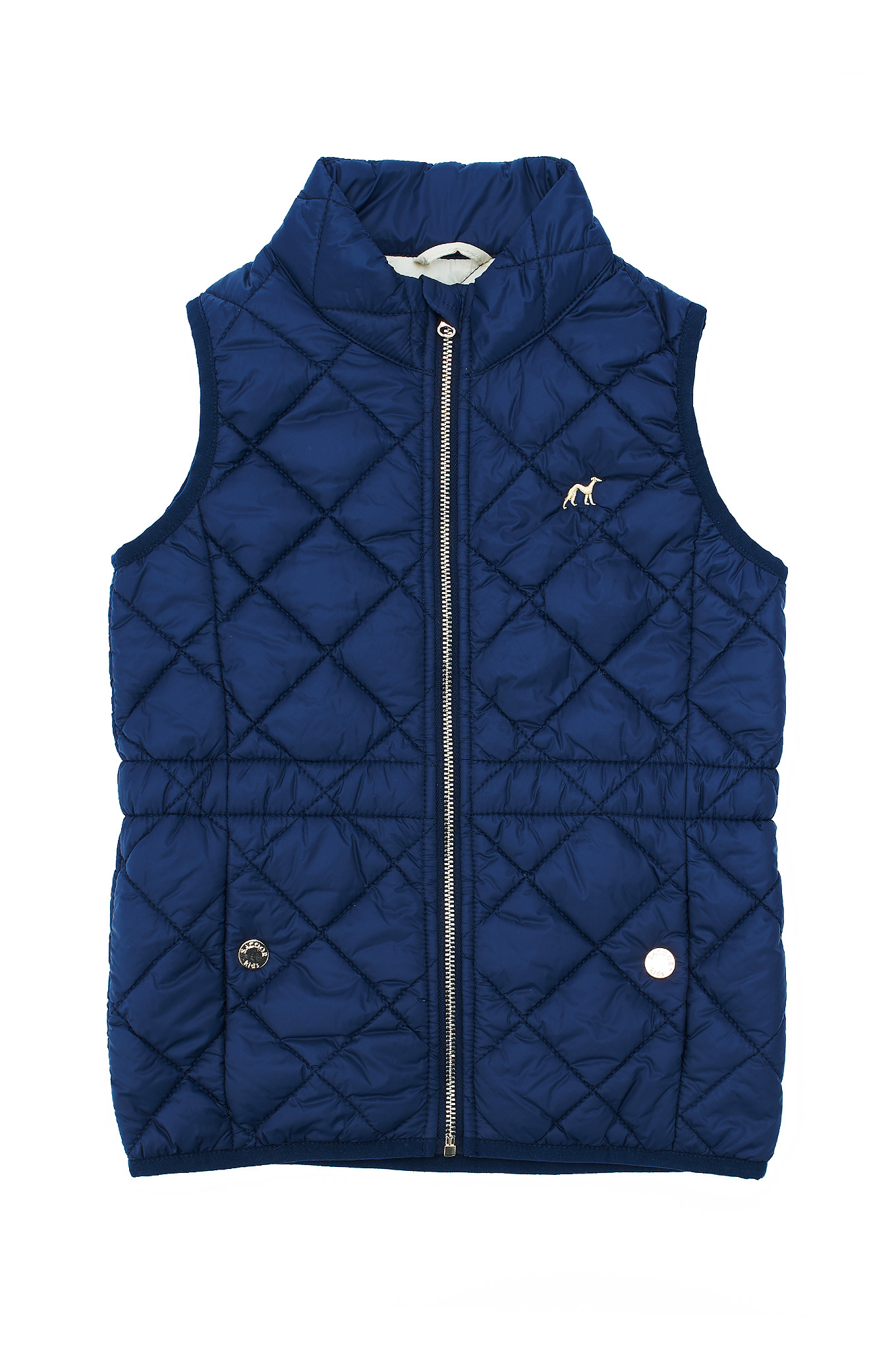 Waist Coat Dark Blue Casual Girl