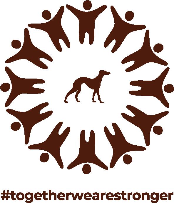 Sacoor logo