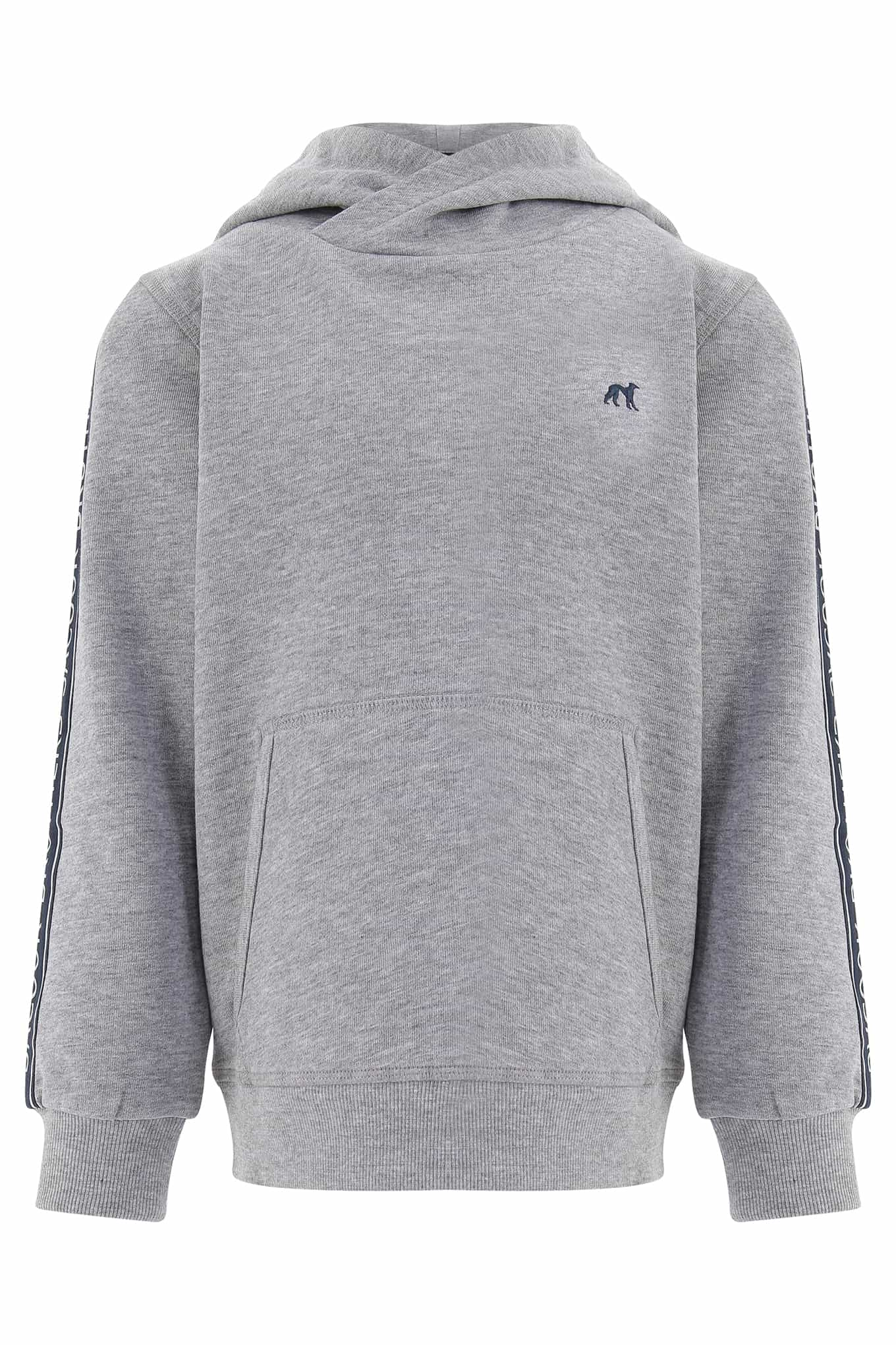 Sweatshirt Light Grey Sport Boy