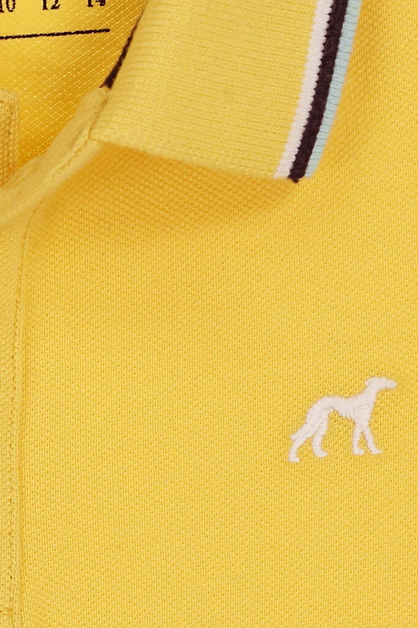 Polo Piquet Amarelo Claro Sport Rapaz